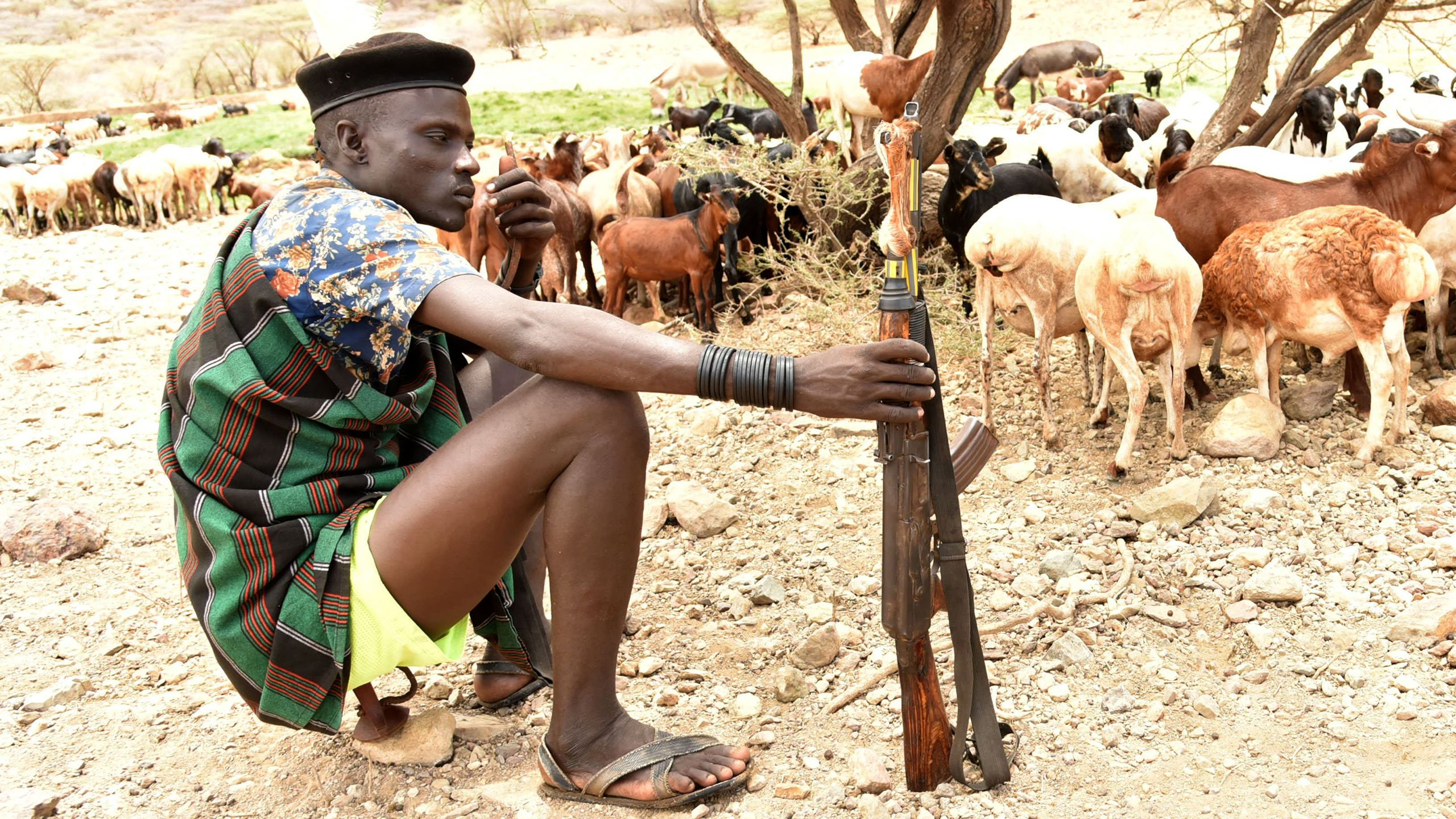 A man in a black beret sits on some type of tool, a gan on his extended right hand, sheep behind him.